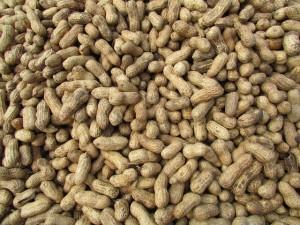peanut allergies, nut allergy